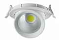 COB CEILING LIGHT