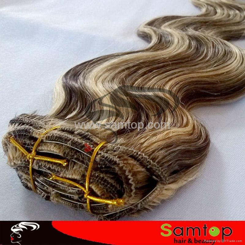 Wholesale Price  virgin clip in hair extension 2