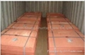hot sell copper cathode