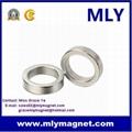 Strong Permanent Neodymium (NdFeB) Ring Magnet 1