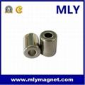 Strong Permanent Neodymium (NdFeB) Ring Magnet 4