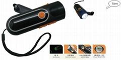 Dynamo torch with FM or AM radio