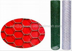 Galvanized Hexagonal wire mesh for poultry
