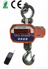 Sell 2013 New hanging scale