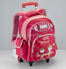 Large trolley bags