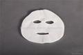 DIY nonwoven facial mask  2