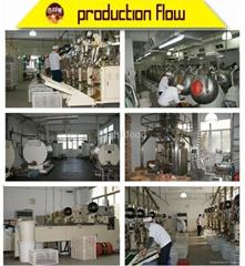Chao'an Jiashili Food Factory