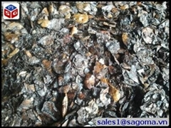 CASHEW NUT SHELL EXTRACTED
