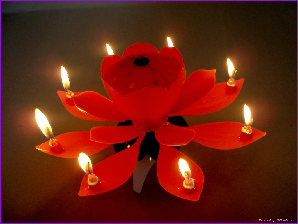 Blooming Flower Rotating Birthday Music Candle 5