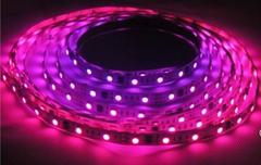 48灯LED幻彩灯条