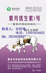 紫月优生素牛用