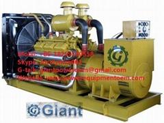 GIANT diesel generator set