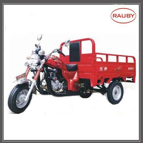 Motor Tricycle Vehicle High Quality Tricycle Tricycle Manufacturer Rb110zh 21 China Services