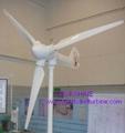 home use wind turbine generator 3KW 2
