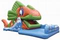 Snappy Fish Slide
