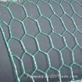 PVC Hexagonal Wire Netting