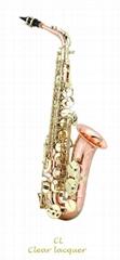 Alto Saxophone(Professio