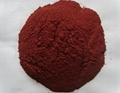Supply Red Rice Yeast Powder