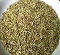 Supply Natural Shikimic Acid
