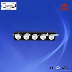 LED 5Heads*10W white matrix