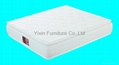 Double pillow top continuous spring