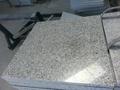 padang light g603 granite 1
