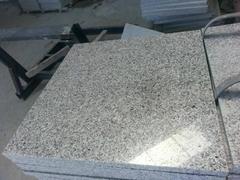 padang light g603 granite