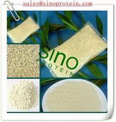 Isolated Soy Protein (SINO9002)