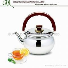 Stainless steel tea kettle