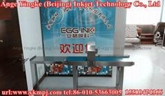 egg code continue inkjet printing machines
