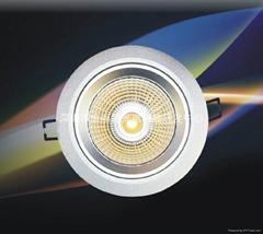LED天花燈 大功率