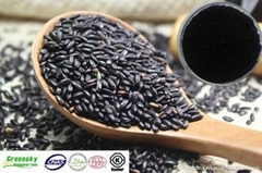 Selling Black Rice Extract