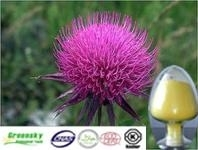 Selling Milk Thistle Extract