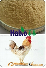 Poultry Specialized Multienzyme