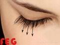 World First Class FEG Eyelash Enhancer Serum for lashes Growing longer 1
