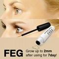 World First Class FEG Eyelash Enhancer Serum for lashes Growing longer 5