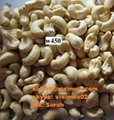 Vietnam cashew nuts for sell 3