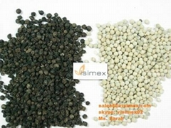 Vietnam black and white pepper for sell