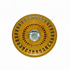 LED防爆(應急)投光燈