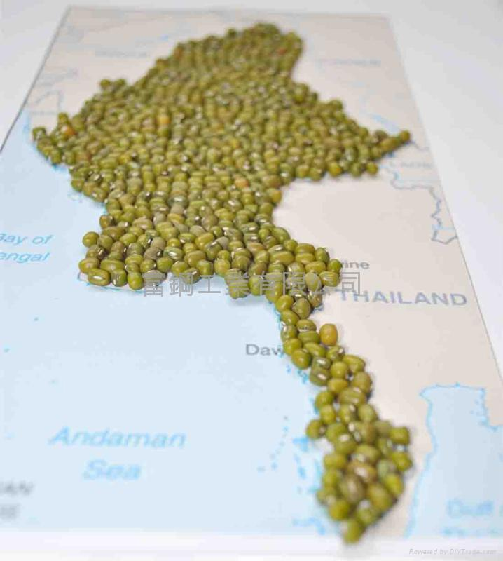 Supply Green Mung Bean  1