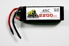 Leopard Power High rate lipo batteries