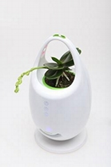 Decorative Ion Air Purifier