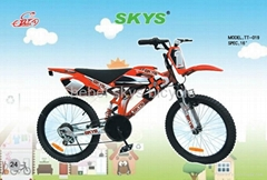 Motor Style Bicycle