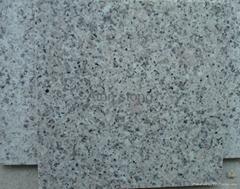 G355 Granite Slabs