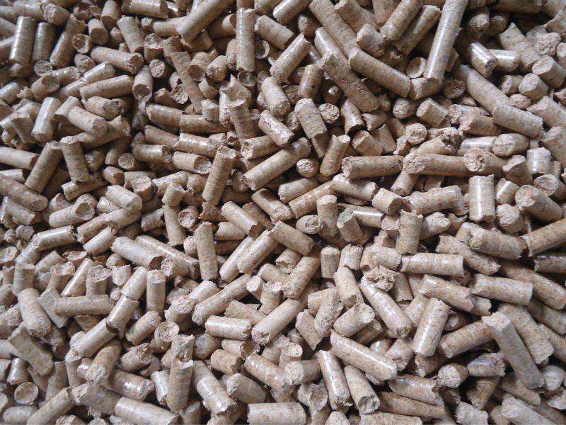 SKJ3-450 pellet mill  2