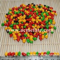 Sunflower Seeds Chocolate