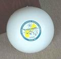 充气沙滩球 5