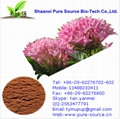 Rhodiola rosea extract for cosmetic raw