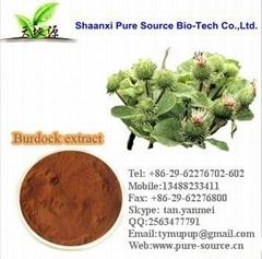 Burdock Extract