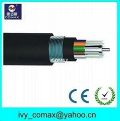 Armored and Double Sheathed fiber optic internet Cable